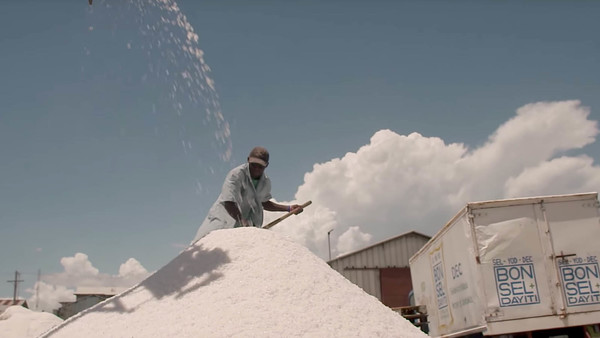 Haiti: How salt can help fight a debilitating disease